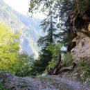 Гегский водопад (Абхазия) Дорога к водопаду