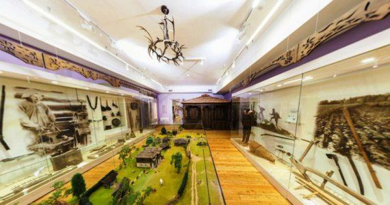 Виртуальная 3D панорама. 1-й зал Абхазского государственного музея