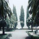 Январь 2017. Зимняя сказка - в Абхазии снег!