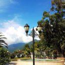 Отдых в Абхазии летом