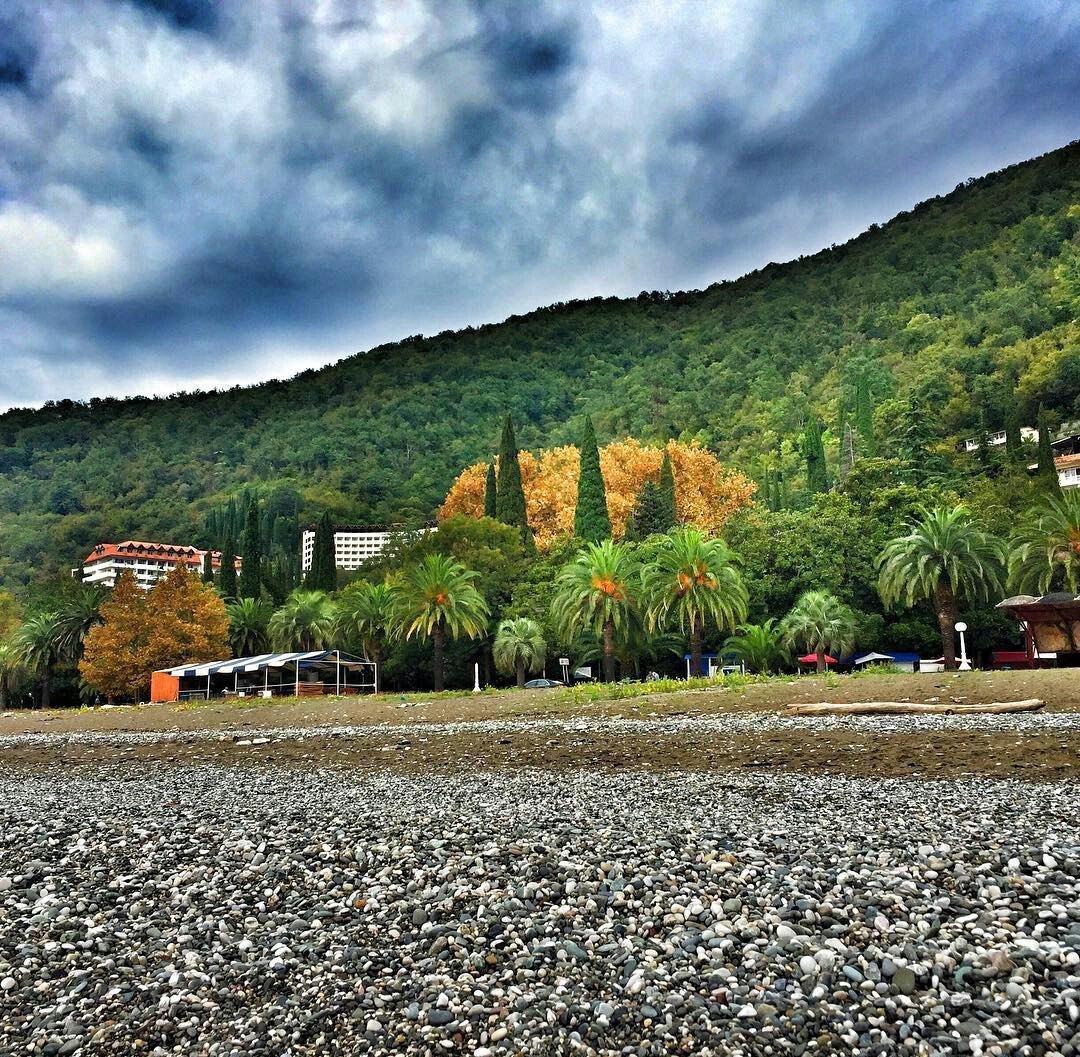 Абхазия в ноябре отдых частный сектор