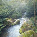 Водопад Ирина, окрестности (Абхазия)