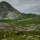 Гора Арбаика (Абхазия)