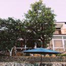 Гостевой дом «ИЛОНА» Новый Афон ул. Чанба № 20
