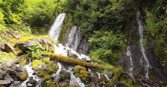Водопад Птичий (Абхазия)