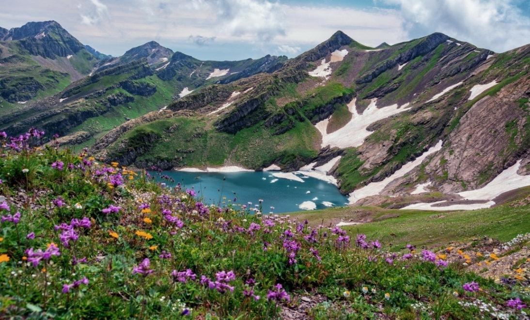 альпийские луга в абхазии фото частности, ставить