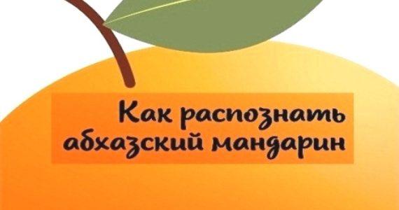 Как распознать именно абхазский мандарин?